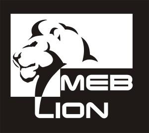 logo_meblion_JPG