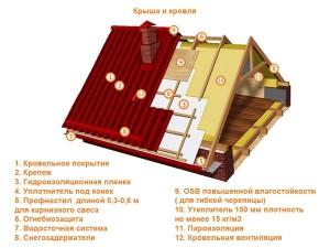 krovlya1